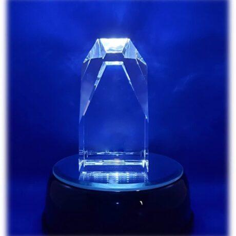 award 100