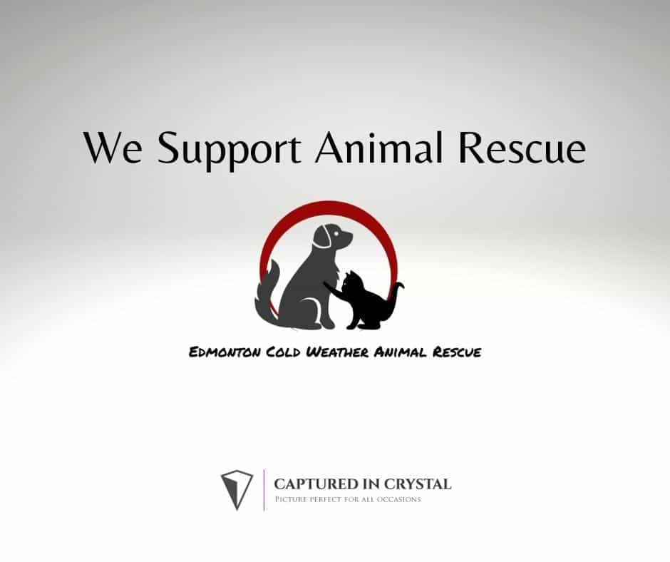 We support Edmonton Cold Weather Animal Rescue
